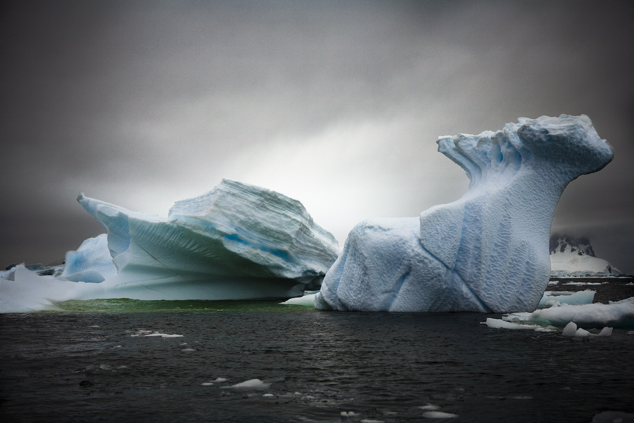 Sebastian Copeland, from the Series Antarctica: The Global Warning
